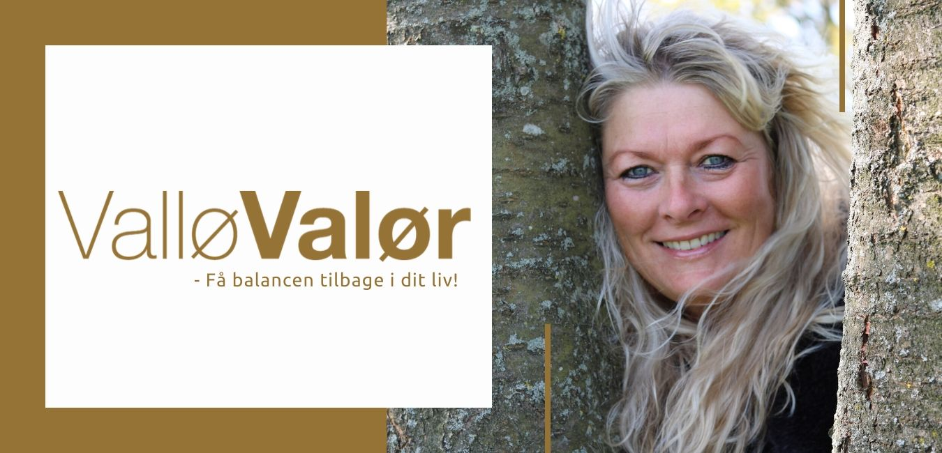 ValløValør header